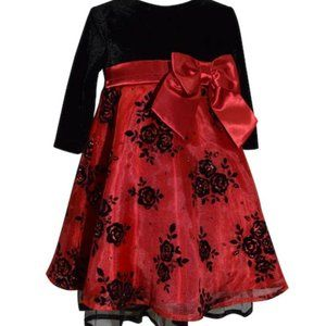 Beautiful Embroidered Dress, 4T